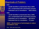 magnitude of problem