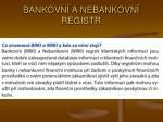 bankovn a nebankovn registr