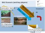 bau scenario and key players