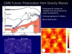 cmb future polarization from gravity waves