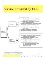 service provided by f i s