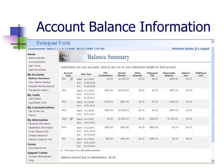 Account Balance Information
