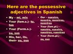 here are the possessive adjectives in spanish