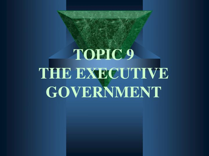 topic 9 the executive government n.