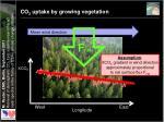 co 2 uptake by growing vegetation