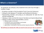 what is a governor