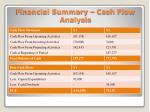 financial summary cash flow analysis