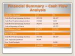 financial summary cash flow analysis