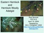 eastern hemlock and hemlock woolly adelgid