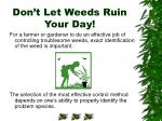 don t let weeds ruin your day