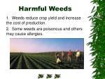 harmful weeds