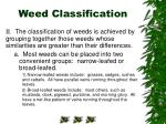 weed classification