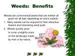 weeds benefits