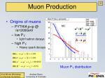 muon production