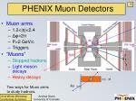phenix muon detectors