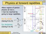 physics at forward rapidities