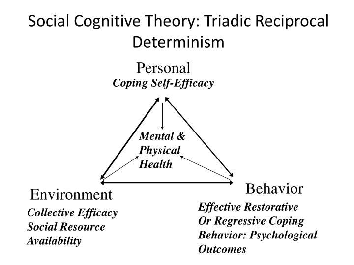 three types of at risk behavior psychology essay Psychology investigates a wide spectrum of topics which include learning and memory, sensation and perception, motivation and emotion, thinking and language, personality and social behavior, intelligence, infancy and child development, mental illness, and much more.
