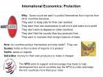 international economics protection