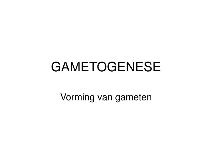 gametogenese n.