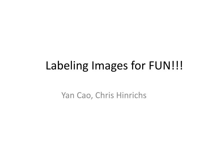labeling images for fun n.