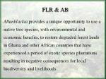 flr ab