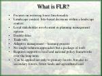 what is flr
