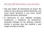 no hay un feminismo sino muchos