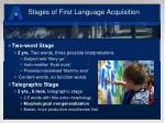 stages of first language acquisition1