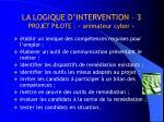 la logique d intervention 3 projet pilote animateur cyber
