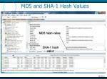 md5 and sha 1 hash values