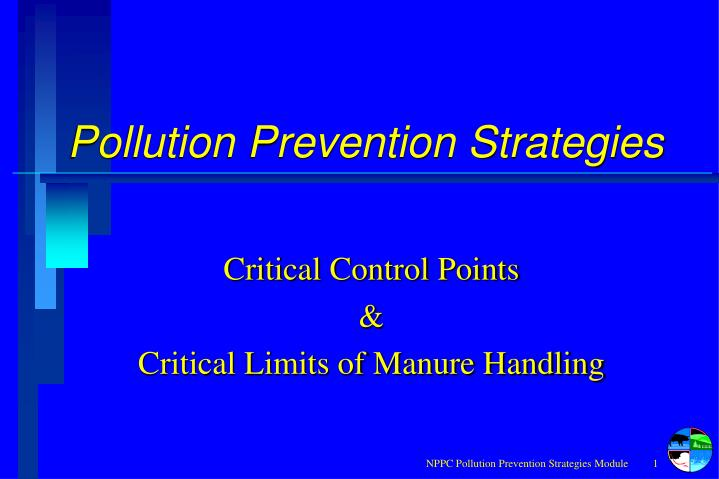 pollution prevention strategies n.