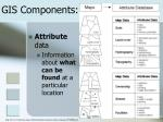 gis components1