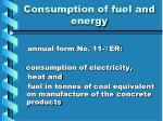 consumption of fuel and energy1