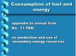 consumption of fuel and energy2