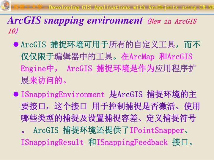 ArcGIS snapping environment