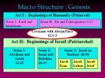 macro structure genesis