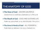the anatomy of god2