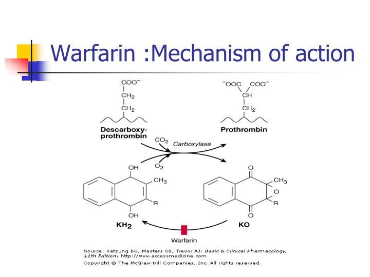 Warfarin :Mechanism of action
