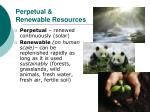 perpetual renewable resources