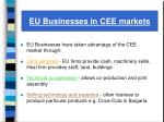 eu businesses in cee markets