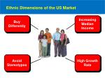 ethnic dimensions of the us market