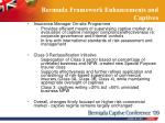 bermuda framework enhancements and captives