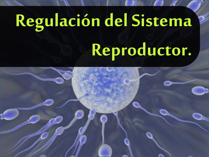 Regulación del Sistema Reproductor.