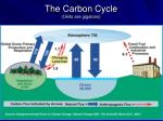 the carbon cycle units are gigatons