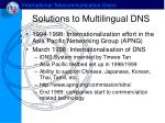 solution s to multilingual dns