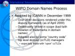 wipo domain names process