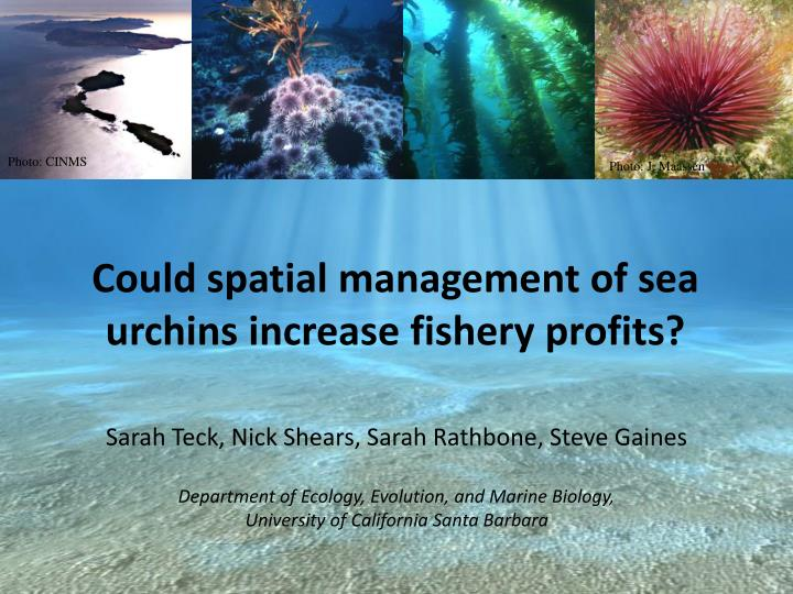 could spatial management of sea urchins increase fishery profits n.