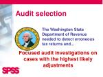 audit selection