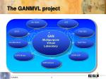the ganmvl project