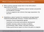 what is corporate social responsibility csr